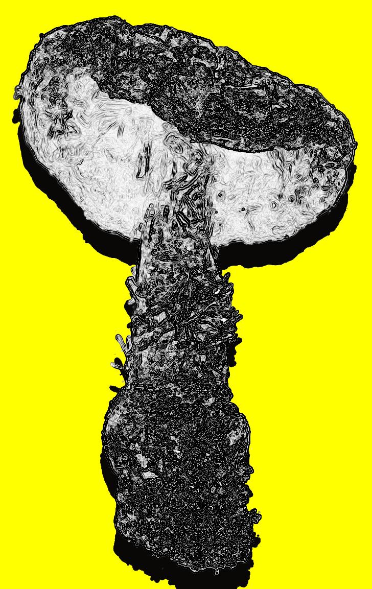 Mushroom Shape